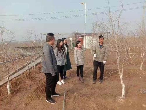郑州市市场监管局联合爱心企业捐赠石榴树苗 助力乡村振兴